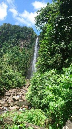 Nationalpark, Guadeloupe: DSC_1353_large.jpg