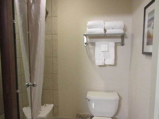 Best Western Plus Olympic Inn: Standard Guest Bathroom
