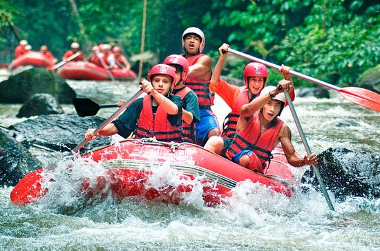 ELEPHANT RIDE AND WATER RAFTING