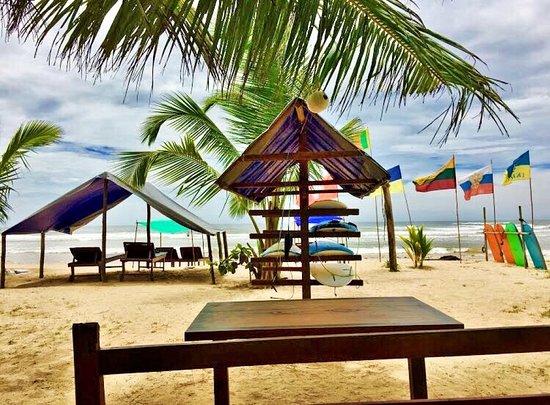 Sun Surf Paradise