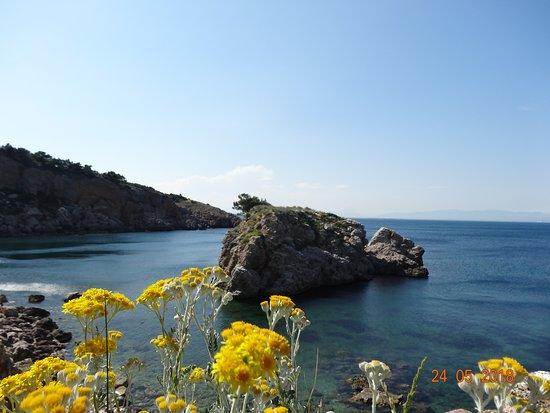 Illa Mateua