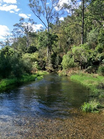 Monto, ออสเตรเลีย: IMG20181002150344_large.jpg