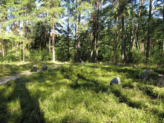 Rezerwat przyrody Kręgi Kamienne