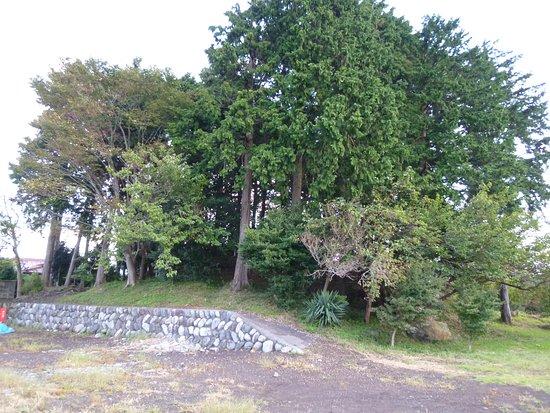 Tsukamoto Tomb