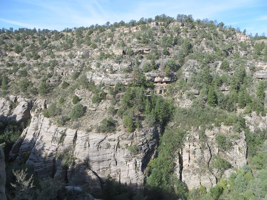 Walnut Canyon National Monument: View of canyon wall + dwellings across from the Visitors Center.
