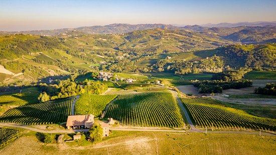 Zelata, อิตาลี: Le colline dell' oltrepo Pavese