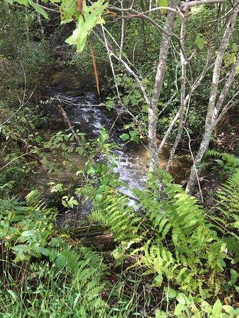 Drums, Πενσυλβάνια: Lake Trail