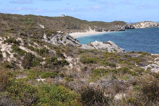 Rottnest Island, ออสเตรเลีย: Dunes and beaches