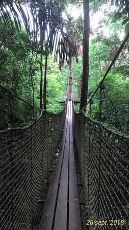 Französisch-Guayana Foto