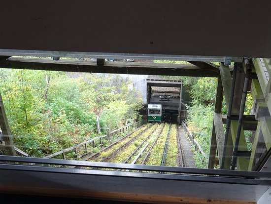 Centre for Alternative Technology: The gravity-fed funicular access cars