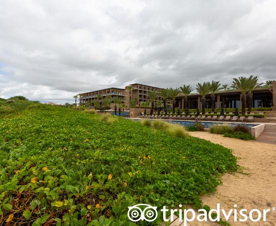 The Beach at JW Marriott Los Cabos Beach Resort & Spa