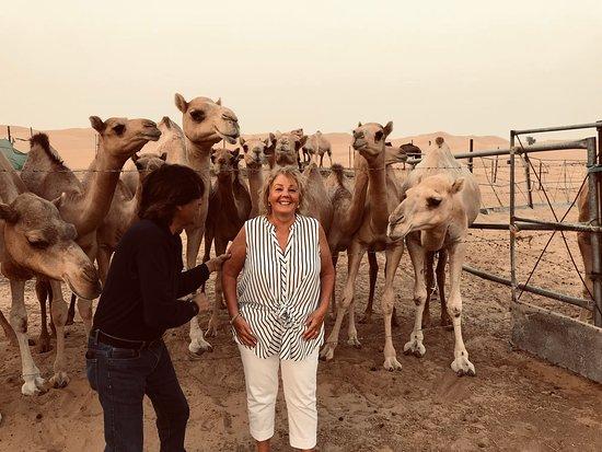 Al Khatim, สหรัฐอาหรับเอมิเรตส์: Camel farm