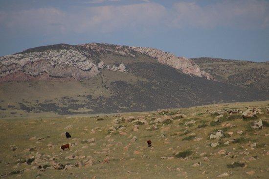 Happy Jack Trailhead: Amazing mountains