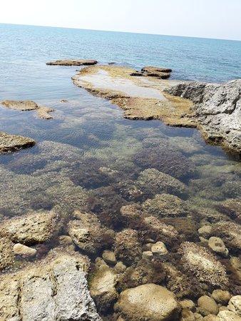 Marina di Palma, Italia: 20180814_113037_large.jpg