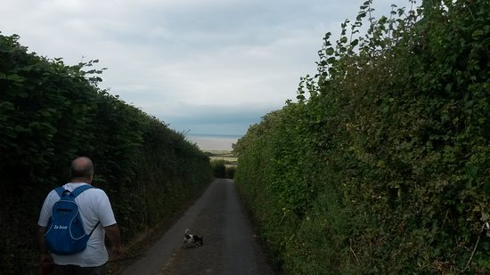 Kilve Beach: On the way to Kilve