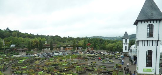 Trago Mills Family Shopping & Leisure Park: View from the resturant