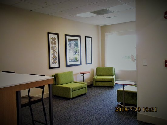 Holiday Inn Express Tampa Fairgrounds: Lobby Sitting area