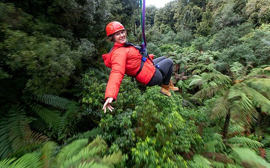 Ultimate Canopy Tour - Rotorua Canopy Tours : ultimate canopy - afamca.org