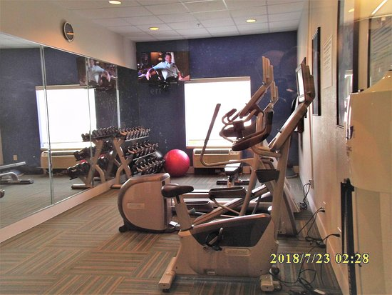 Holiday Inn Express Tampa Fairgrounds: Fitness Center