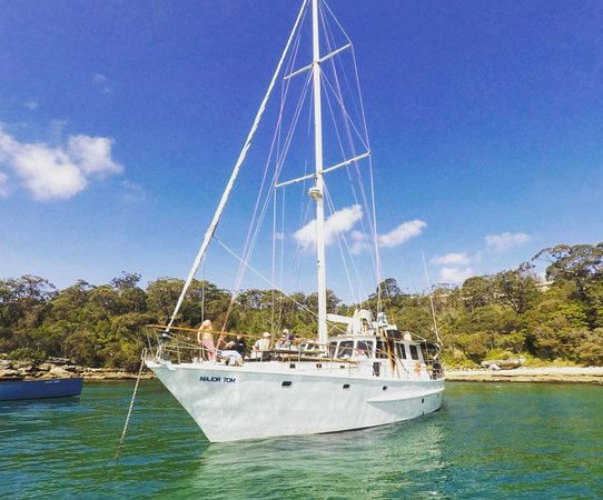 Rose Bay, Australien: we know where to anchor major tom boat hire