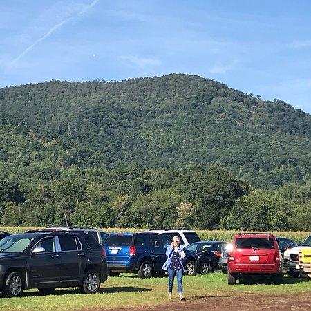 Blue Ridge, VA: photo4.jpg