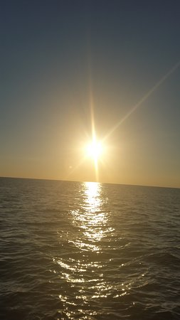 Paradise Adventures Catamaran Image