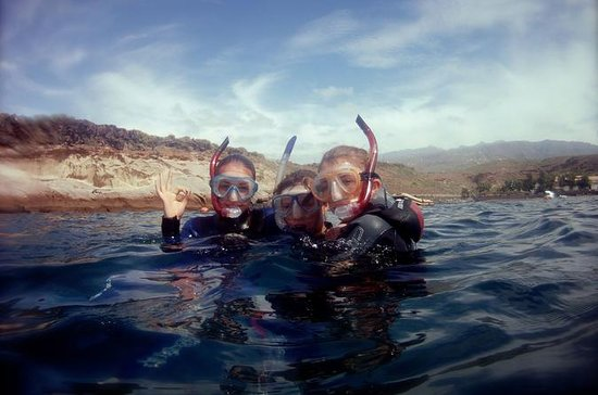 Snorkelling in the South of Tenerife