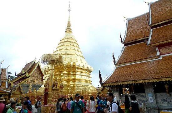 Excursão de um dia Templo Doi Suthep...