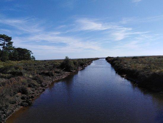 Reserve Naturelle des Pres Sales d'Ares et de Lege