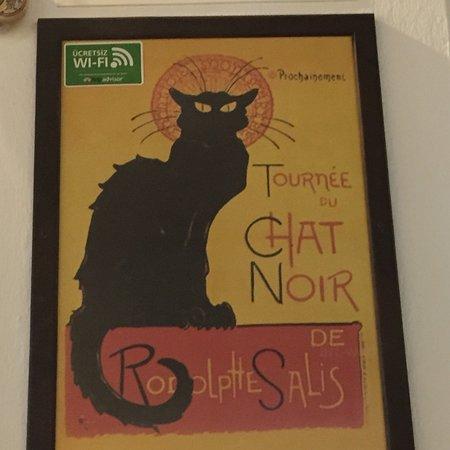 The Black Cat: photo0.jpg