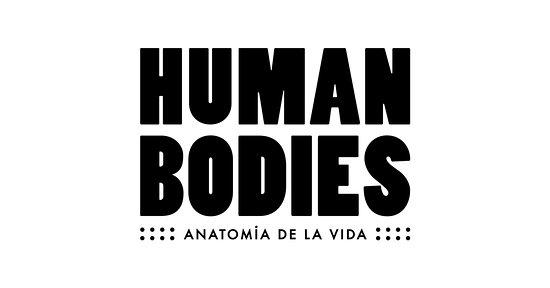 Human Bodies. Anatomía de la vida.