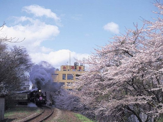 Gosen ภาพถ่าย