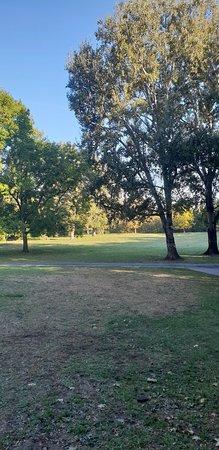 Furth Stadtpark: 20181005_093037_large.jpg