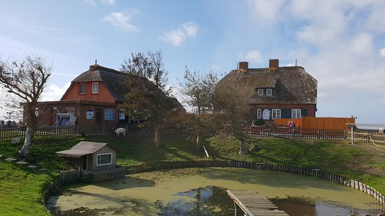 Pellworm, Alemanha: Die Häuser auf der Warft