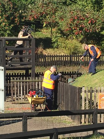 Grosmont, UK: Channel 5 hard at work! Easier than grass cutting downhill