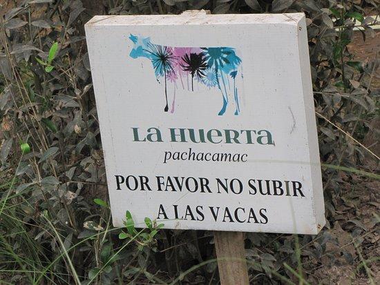 Pachacamac, بيرو: Es mas bien para saber donde estas