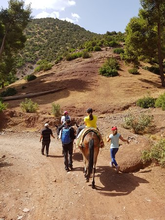 Excursions on the mule in valley Ouirgane