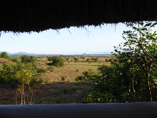 Kidepo Valley National Park, Uganda: view from bathroom
