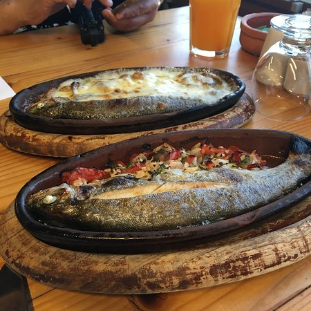 اطباق الاسماك