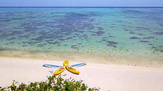 Etu Moana: Free use of Kayaks and SUPS
