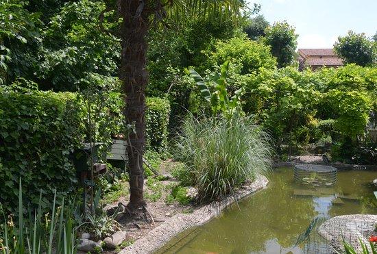 Il Giardino Della Casa Selvatica