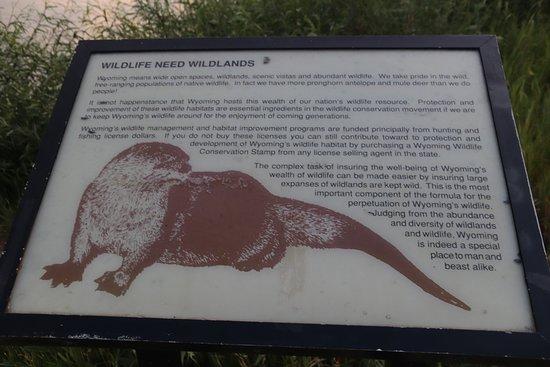Bear River State Park: Wildlife