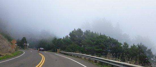 Foggy day, still beautiful