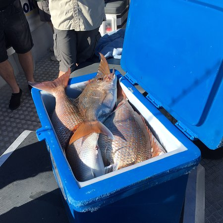 Days Out Fishing Charters: photo2.jpg