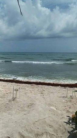 Beach - Bahia Principe Grand Tulum Photo