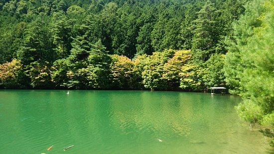 Minami Alps, Japan: 紅葉の時期はすごいキレイだと思われる。