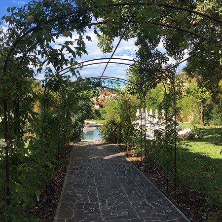 Nocchi, Italy: photo1.jpg