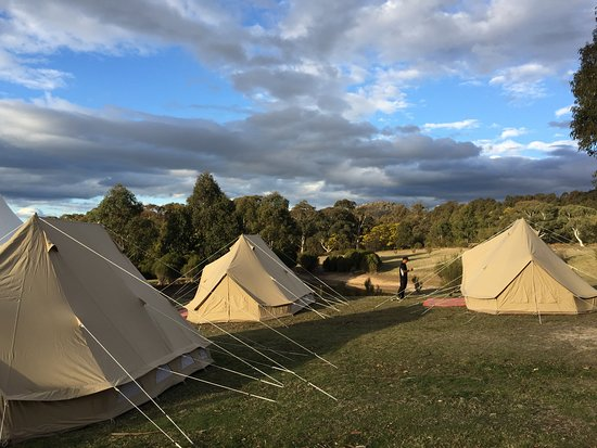 Kangaroo Valley, Australia: Our 6m Family Emperor Tents at Wildfest Tidbinbilla