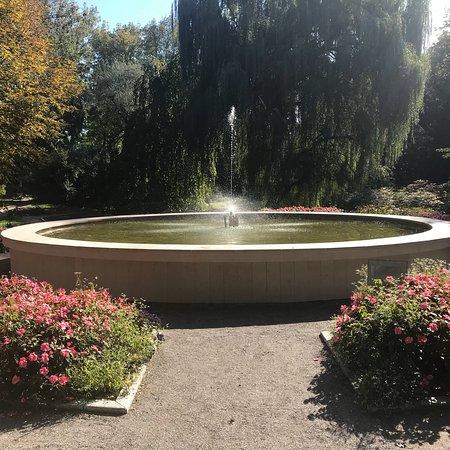 Garten Pflanzen Trockenen Regionen Tipps Sparen , The Botanical Garden Of The Jagiellonian University Krakau
