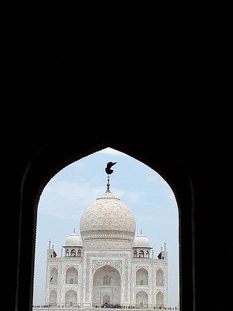 Fantastic day in Agra